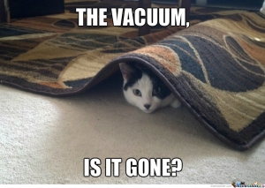 no-anything-but-the-vacuum-joke_o_1635849